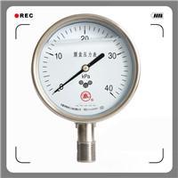 不锈钢膜盒压力表系列