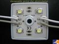 LED module (aluminum)