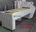 blister sealing machine 1