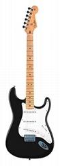 011-7432American Stratocaster