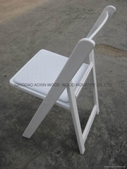 Folding Resin Chair