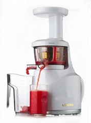 CE Approval Low Juicer