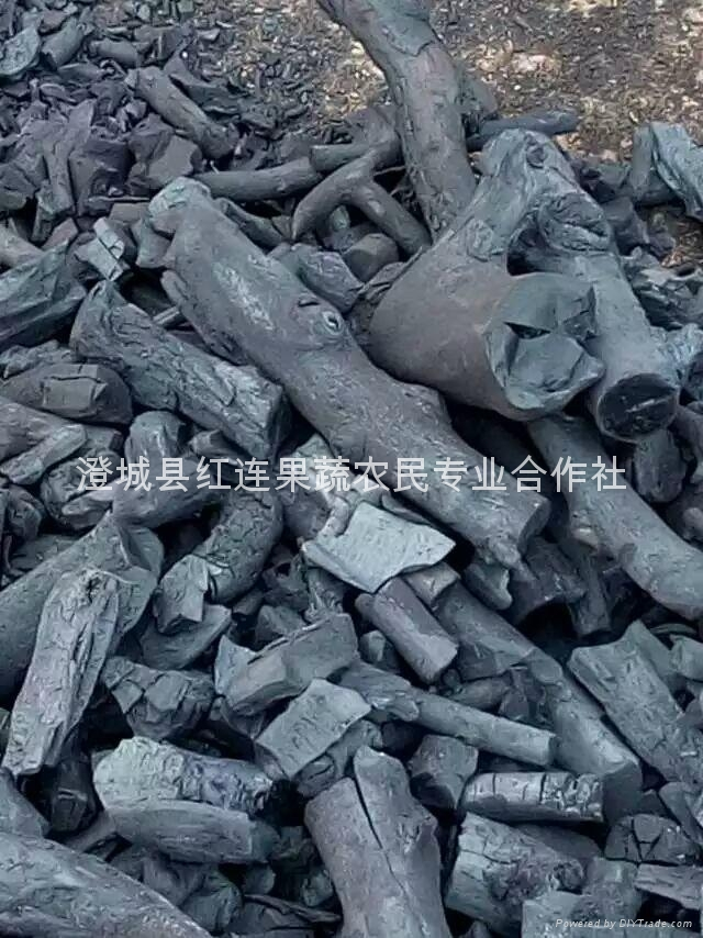 Shaan large supply of the Shaanxi apple wood charcoal 1