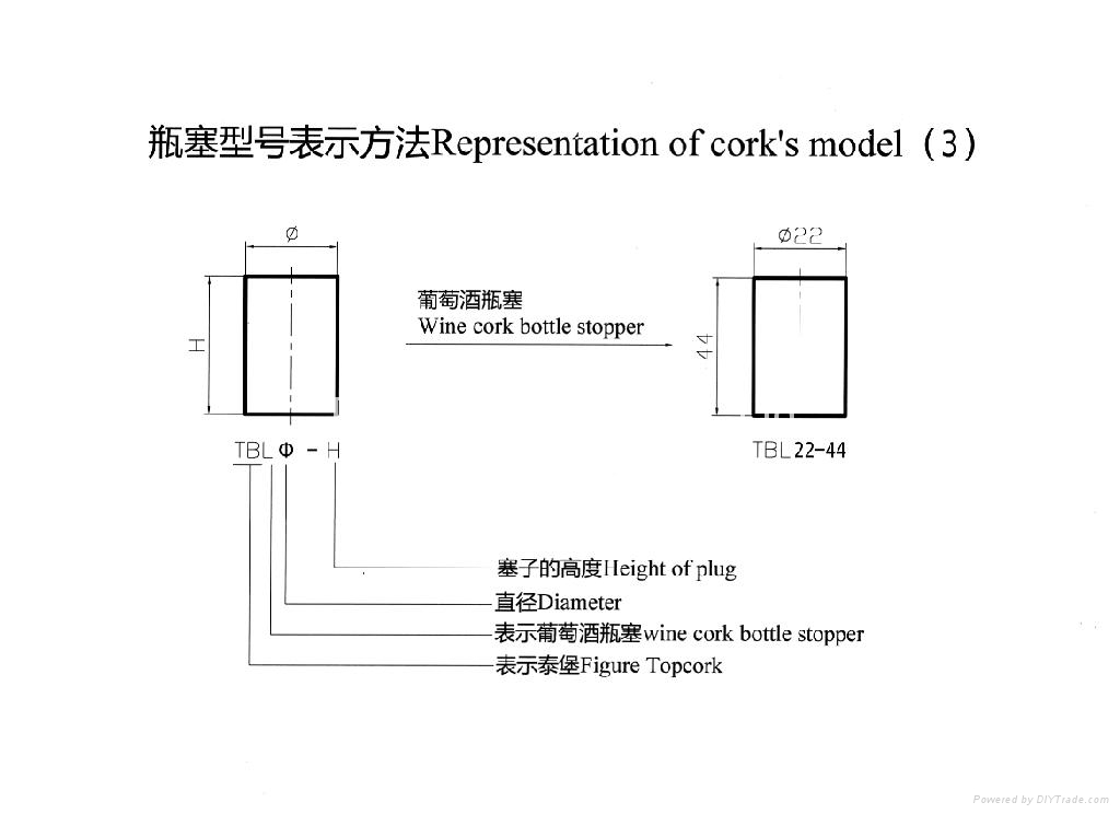 Representation of cork's model(3)