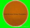 artemia cysts,brine shrimp eggs 2