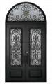 Custom Art Metal Doors Systems 5