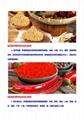 科技大學納米粉碎機磨粉機 2
