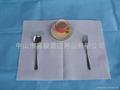 Paper napkin 2