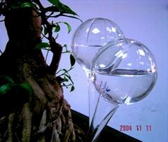 watering ball