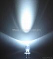 超高亮白光LED