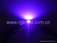 1W大功率紫光二极管