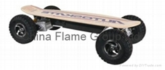 Electric Skateboard With 1300W Brushless Motor