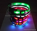 LED pet collar for dogs! LED Dog Collar 6 Lights Flashing Safe Nylon Pet Collars