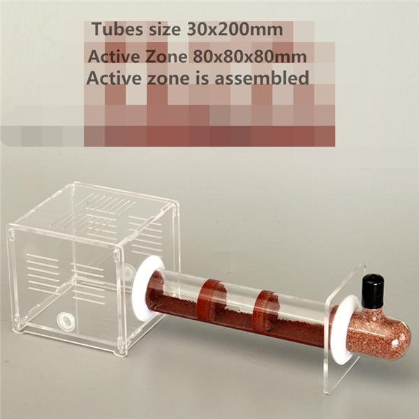 Bamboo Glass Tubes Ant Nest With Active Zone Ants Castle Workshop Ants Villa  1