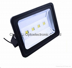 Driverless COB Flood light-FS21-200W