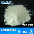 Poly anionic Cellulose 1