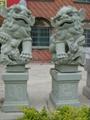 石雕狮子献钱狮 4