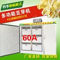豆芽機商用設備黃綠豆芽發芽機大