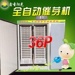 萝卜苗 豌豆 香椿芽苗菜种子催芽机 特价芽苗发芽机