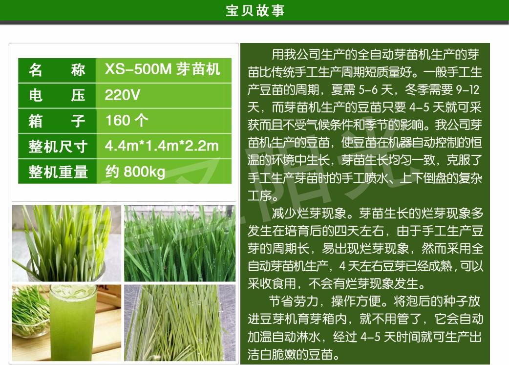 Large bean sprouts production machine to green sprouts machine 2