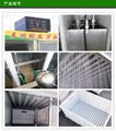 Price preference of high efficiency and energy saving bean sprout machine 4