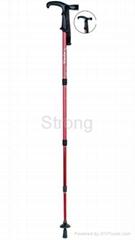 led light walking stick