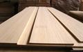 Bamboo board  2