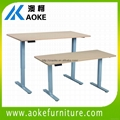 Aoke Ak2rt Zb2 Adjustable Height Desks China Manufacturer