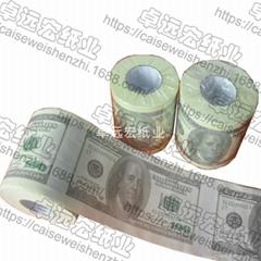 Dollar printed toilet pa