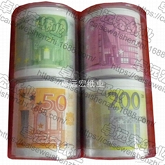 Money printed toilet paper euro toilet tissue