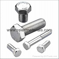 Stainless Steel Fasteners SA193 Grade B8