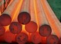 SAE52100 Bars SAE 52100 Forged Bars