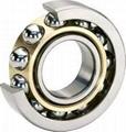 Bearing Steel Seamless Tubes SAE 52100 2