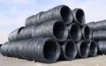 High Carbon Steel Wire Rod Grade 71/75 76/80 81/85