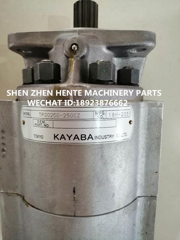 日本原裝KAYABA齒輪泵TP20250-250CZ 2