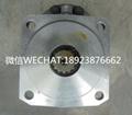 KAYABA齒輪泵P20150CJ 適用於吊車 2