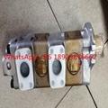 原装进口SHIMADZU岛津齿轮泵STY-36273.5R832用于TCM叉车