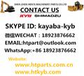 日本原裝KYB KAYABA卡亞巴齒輪泵KFP3260-KP1005AK 5