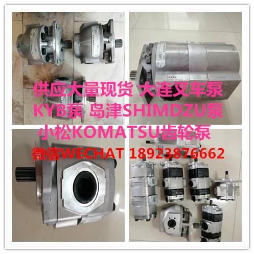 YT9100246-10 齒輪油泵 1