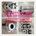 YT9100246-10 齿轮油泵