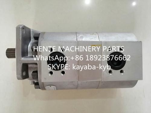 KAYABA  TP20200-100A雙聯泵20110-22016用於日立 1