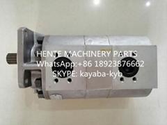 KAYABA  TP20200-100A雙聯泵20110-2