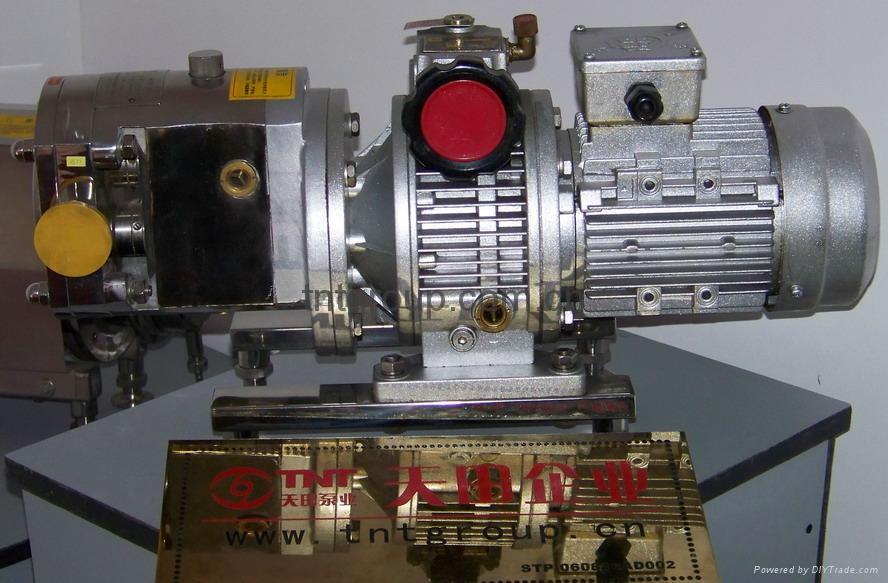 轉子泵 1