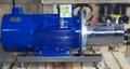 轉子泵 2