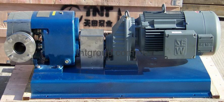 轉子泵 3