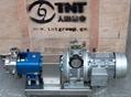 轉子泵 5