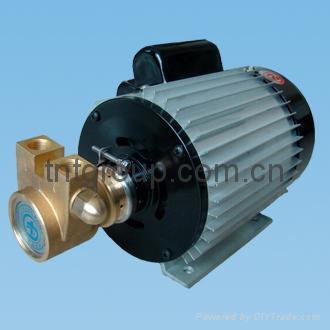 葉片泵 4