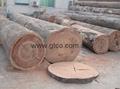 Keruing Plywood