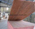 DIL faced combi core plywood (India)