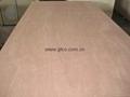 PKD Faced Combin core Plywood ( India)
